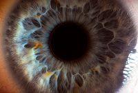 amazing photo human eye